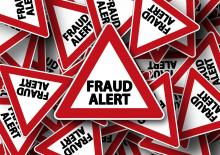 fraude en bande organisée